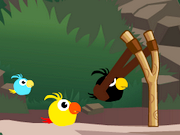 Cute Birds Forest