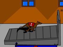 Greyhound Racer Rampage