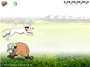 Sheep Jumper